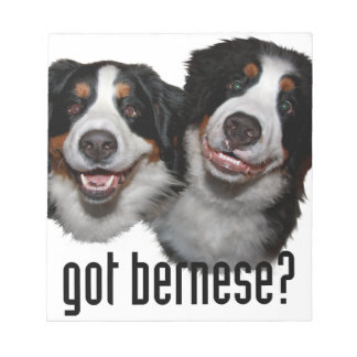 got bernese? notepad