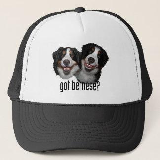 got bernese? trucker hat