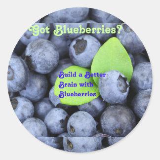 Got Blueberries? Classic Round Sticker