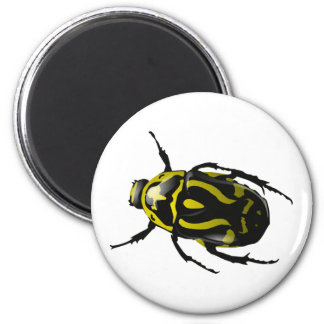 Got Bugs-Wild Colored Beetle 6 Cm Round Magnet