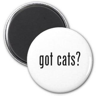 got cats? magnet