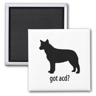 Got Cattle Dog Magnet
