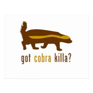 got cobra killa (honey badger) postcard