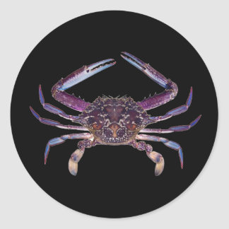 Got Crabs? nice sea crab-dinner time Classic Round Sticker
