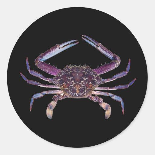 Got Crabs? nice sea crab-dinner time Round Sticker