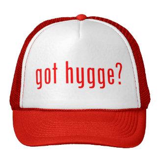 got hygge? cap