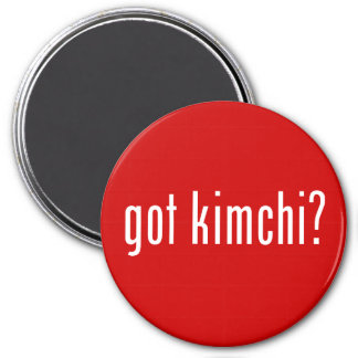 got kimchi? magnet
