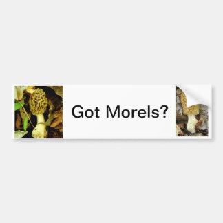 Got Morel Mushrooms Bumper Sticker