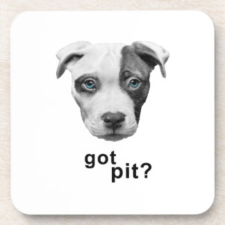 got pit.png coasters
