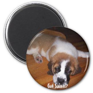 Got Saints? 6 Cm Round Magnet
