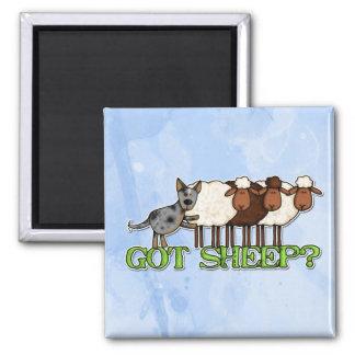 got sheep refrigerator magnet