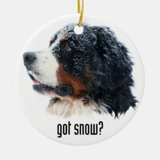 got snow? Bernese Mountain Dog Ceramic Ornament