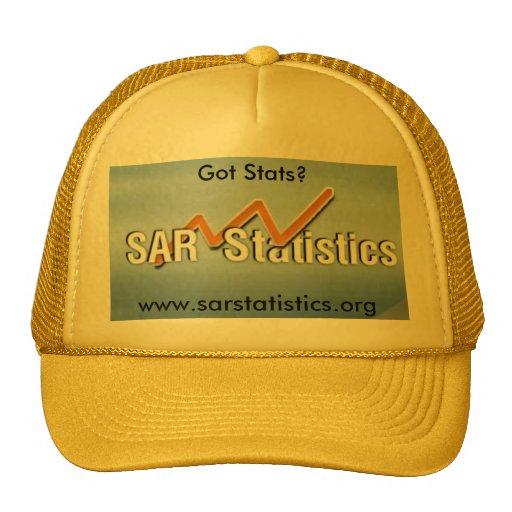 Got Stats?, www.sarstatistics... Hat