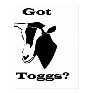 Got Toggs Postcard