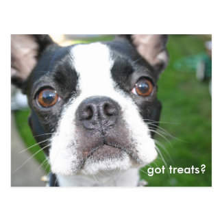 Got treats postcard