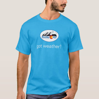 got weather? T-Shirt (Small Wintry Logo)