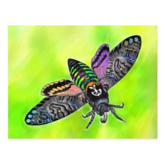 Goth Moth postcard