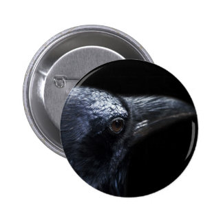 Gothic Raven and Crow Familiar Pinback Button