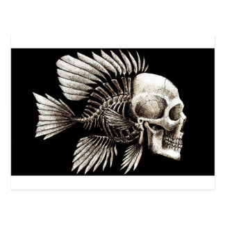 GOTHIC SKULL FISH POSTCARD