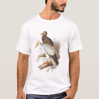 Gould - Egyptian Vulture - Neophron percnopterus T-Shirt