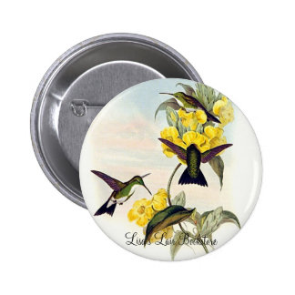 Gould - White-Throated Emerald Hummingbird Pins