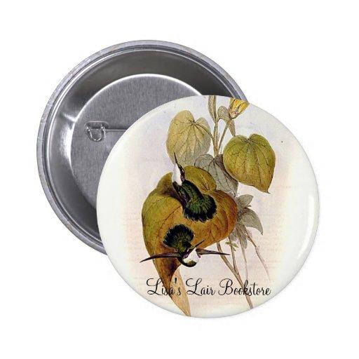 Gould - White-Throated Wedgebill Hummingbird Pin