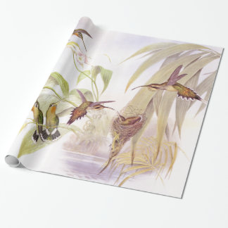Goulds' Hummingbirds Wrapping Paper