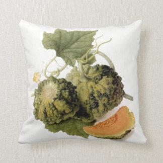 Gourd & Vine Cushion