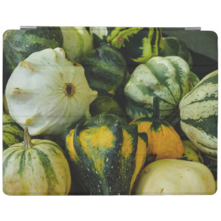 Gourds Galore iPad Cover