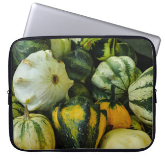 Gourds Galore Laptop Sleeve