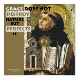 Grace Perfects Nature Aquinas Resistance poster