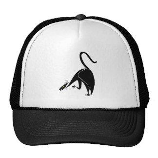 Graceful Black Cat Stalking Cap