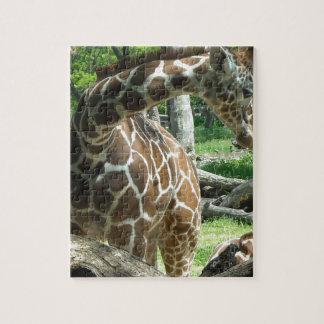 Graceful Giraffe Jigsaw Puzzle
