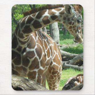 Graceful Giraffe Mouse Pad
