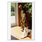 Gracey and Bad Kitty Sunbathing Card