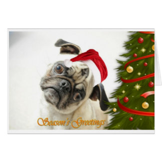 Graceysue Christmas Card