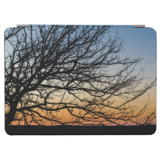 Gradient Sky in Winter iPad Air Cover