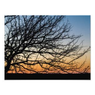 Gradient Sky in Winter Photograph