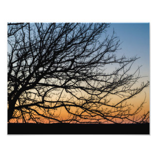 Gradient Sky in Winter Photographic Print