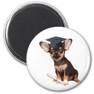 Graduation Chihuahua dog 6 Cm Round Magnet