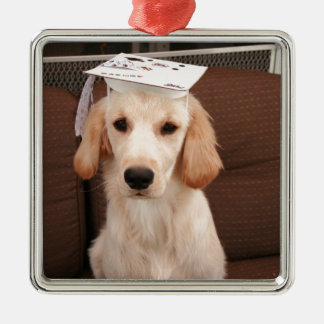 Graduation products christmas ornament
