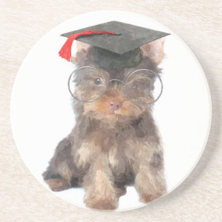 Graduation Yorkshire Terrier Drink Coaster