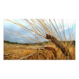 Grain Emporium Pack Of Standard Business Cards