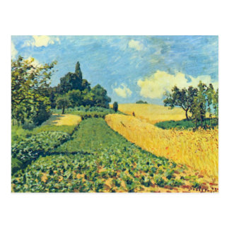 Grain fields on the hills of Argenteuil by Sisley Postcard