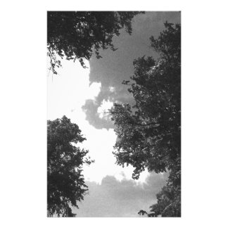 Grainy Black and White image of Trees and Sky. Flyers