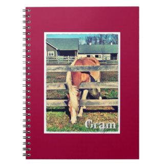 Gram Deluxe Edition Notebook