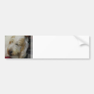 Grand Basset Dog Bumper Sticker