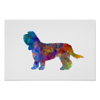 Grand Basset Griffon Vendeen in watercolor Poster