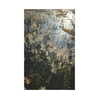Grand Bay Wildlife Landscape Canvas Print
