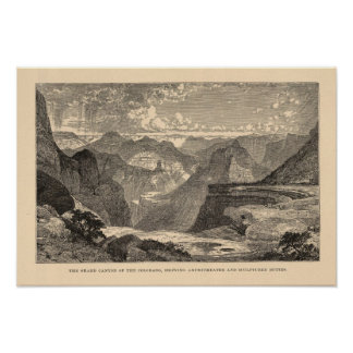 Grand Canyon, Amphitheatre, Sculptured Buttes Posters